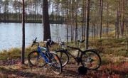 Cycling in forest trails