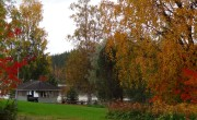 Ruska, the autumn colors