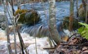 River rapids at springtime
