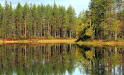 The lake like a mirror in autumn
