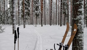 Cross-country back-country skiing