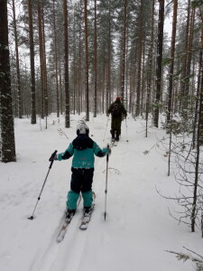 Backcountry crosscountry skiing