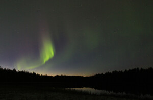 Delicate autumn northern lights